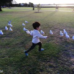 Shelley Beach Park 여행 사진
