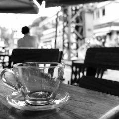 Cafe Neko User Photo