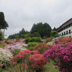 箱根蘆之湯花園用戶圖片