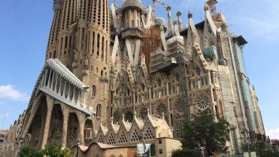 Vinalium Sagrada Familia