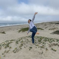 Surf Beach User Photo