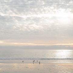 Santa Monica Beach User Photo