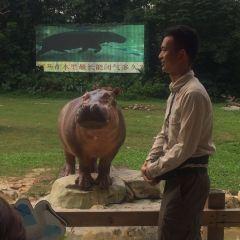 長隆野生動物世界用戶圖片