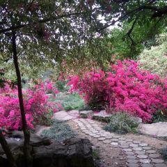 Xinxiu Park User Photo