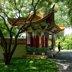 Chinese Garden User Photo