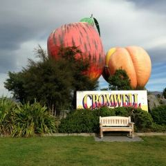 Cromwell User Photo