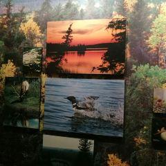 Royal Saskatchewan Museum用戶圖片