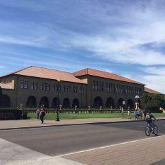 스탠포드 대학 여행 사진