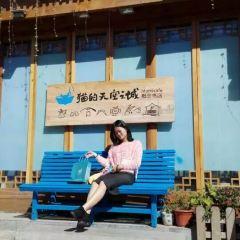 貓的天空之城概唸書店(麗江古城店)用戶圖片