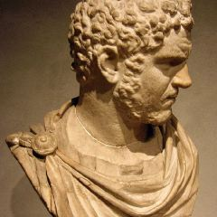 高盧-羅馬文化博物館用戶圖片