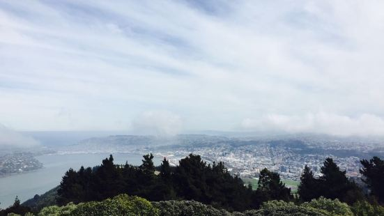 Signal Hill, Dunedin