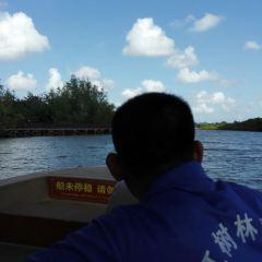 Dongzhaigang mangroves User Photo