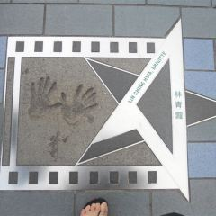 Avenue Of Stars User Photo