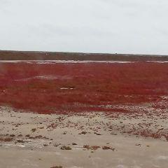 八仙崗紅海灘用戶圖片