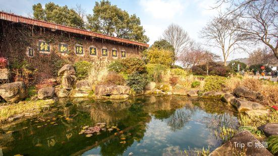中國茶葉博物館