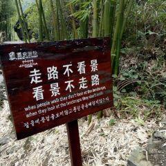 Jindao Canyon User Photo
