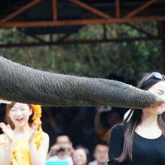 Meigong River Campfire Party User Photo