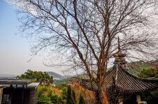 西佘山园-上海-doris圈圈