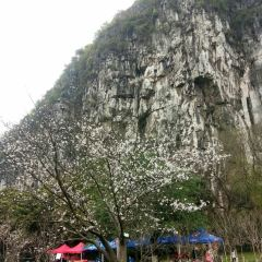 Nanxi Mountain Scenic Area User Photo