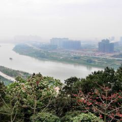 Qingxiu Mountain User Photo
