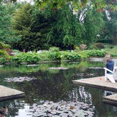 花卉植物園用戶圖片
