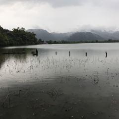 陷河濕地用戶圖片