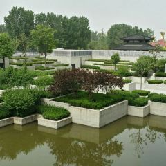 Shangqiu Museum User Photo