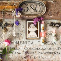 斯塔列諾公墓用戶圖片