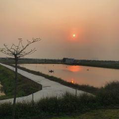 Gull Island User Photo