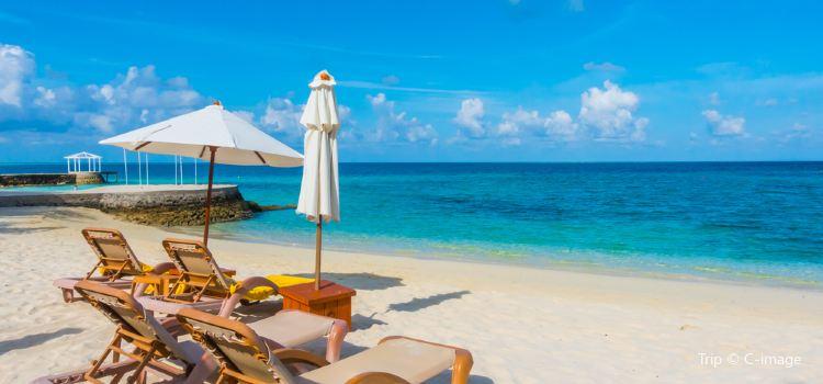 Canareef Resort Formerly Herathera Island Resort Travel