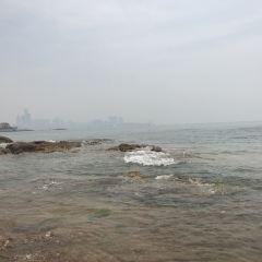 제3해수욕장 여행 사진