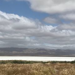 Carrizo Plain National Monument用戶圖片