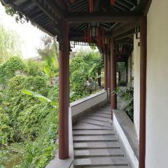 Zhan Garden User Photo