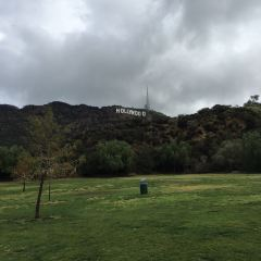 Hollywood Sign User Photo