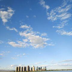 文瀛湖用戶圖片