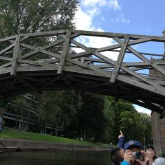 數學橋用戶圖片