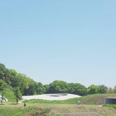 테시마 미술관 여행 사진