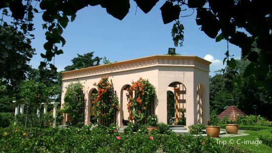 The Hibiscus Park