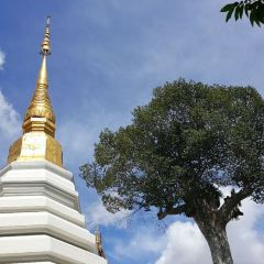 왓 체디루앙 여행 사진