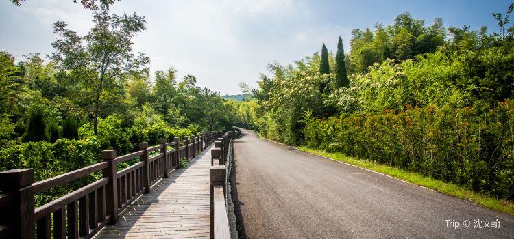 유쯔산 삼림공원2