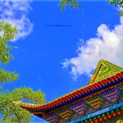 Zanpu Linka User Photo