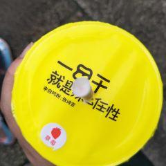 一鳴真鮮奶吧(松陽太平坊店)用戶圖片