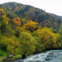 梭磨河峽谷用戶圖片