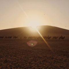 鳴沙山用戶圖片