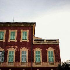 Matisse Museum User Photo