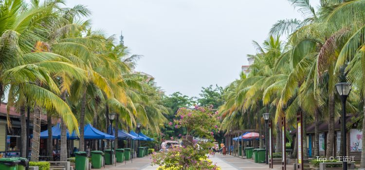 Baishamen Park1