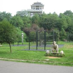 Pinghu Park User Photo