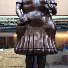 安蒂奧基亞省博物館用戶圖片