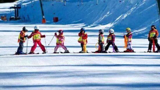 陽崖溝滑雪場