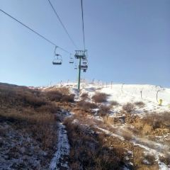 太偉滑雪場用戶圖片